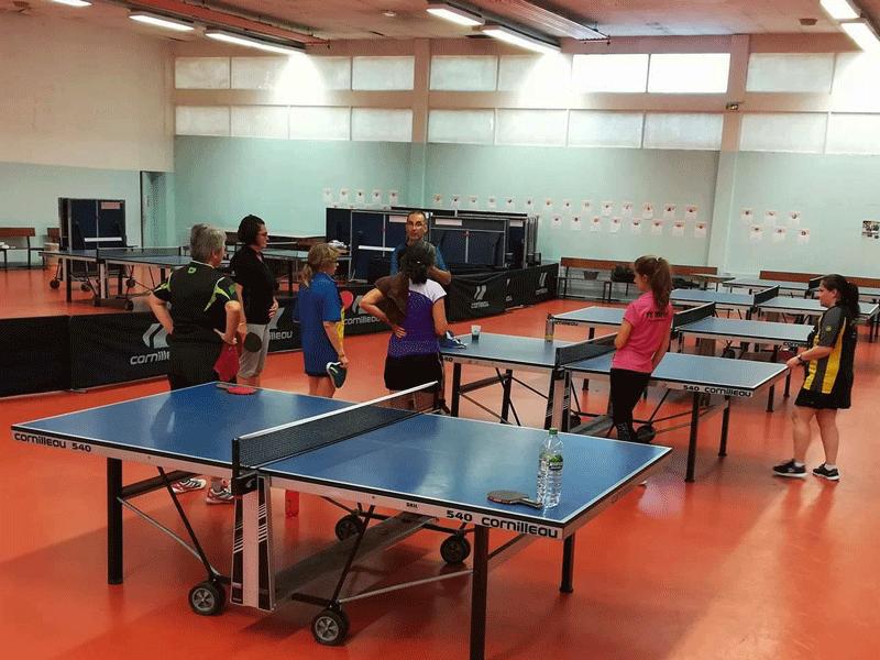 Public f minin comit tennis de table rh ne m tropole de for Tennis de table lyon 6