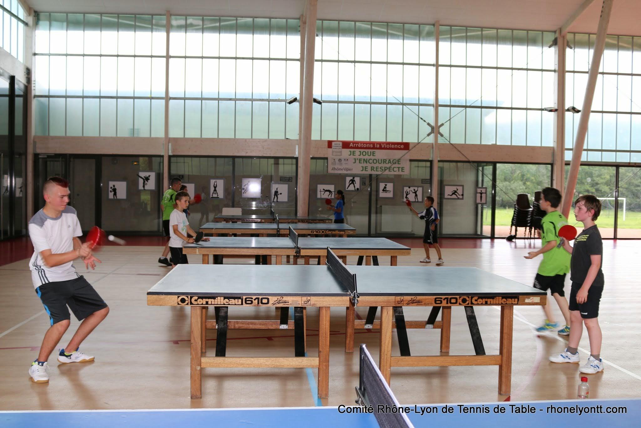 Comp titions par quipes comit tennis de table rh ne - Butterfly tennis de table france ...