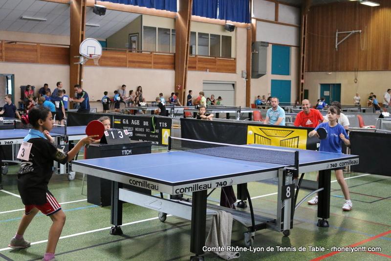 Clubs comit tennis de table rh ne m tropole de lyon for Tennis de table lyon 6
